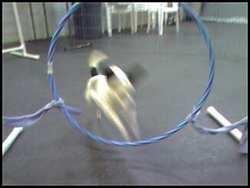 Mancha_tire_jump_2